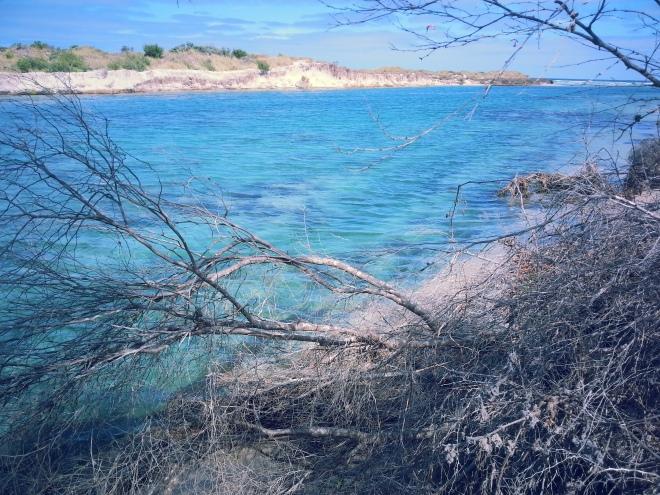 magnifiques plages de l australie