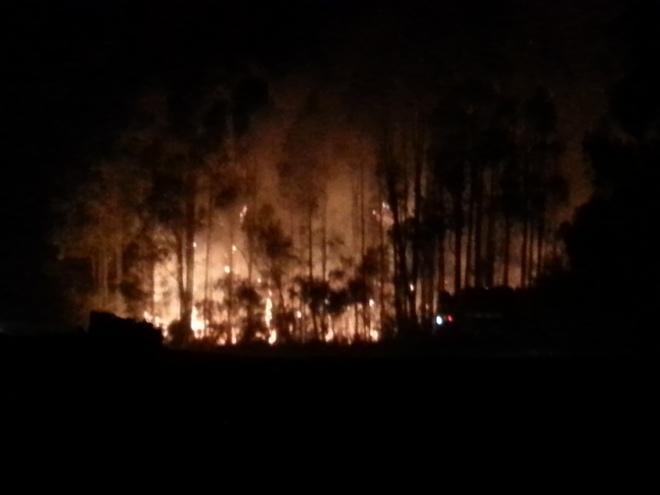stressful bushfire